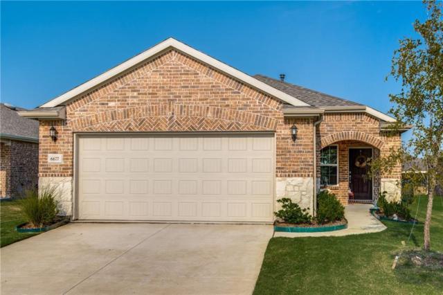 6677 Trout Lane, Frisco, TX 75034 (MLS #13918766) :: Team Hodnett