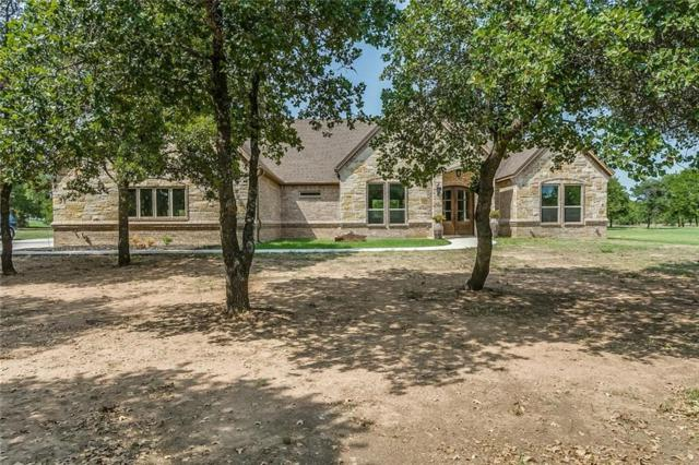 106 Treeline Court, Lipan, TX 76462 (MLS #13919828) :: Frankie Arthur Real Estate
