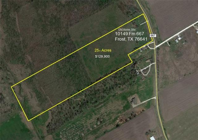 00 Fm 667, Frost, TX 76641 (MLS #13919979) :: The Real Estate Station