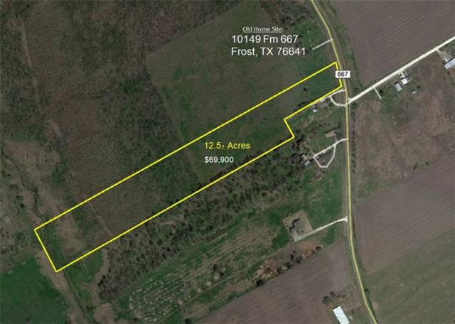 000 Fm 667, Frost, TX 76641 (MLS #13919993) :: The Real Estate Station