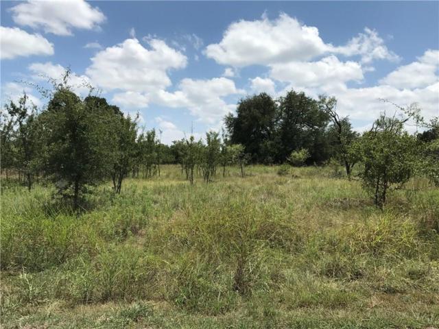 000 Mercers Preserve Road, Comanche, TX 76442 (MLS #13922193) :: The Heyl Group at Keller Williams
