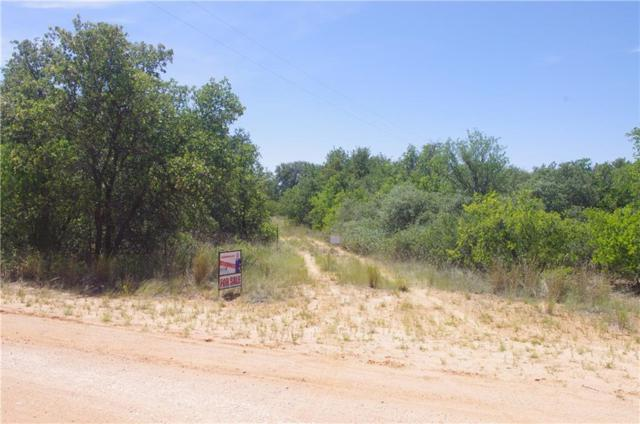 6435 Private Road 705, Anson, TX 79501 (MLS #13923007) :: The Tonya Harbin Team