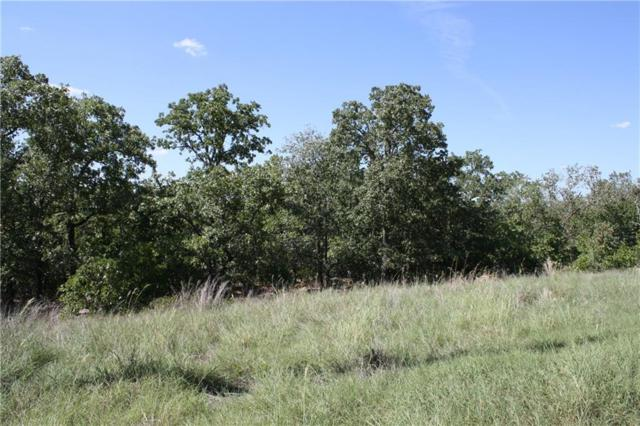 TBD Twin Lakes Court, Bowie, TX 76230 (MLS #13923863) :: Frankie Arthur Real Estate