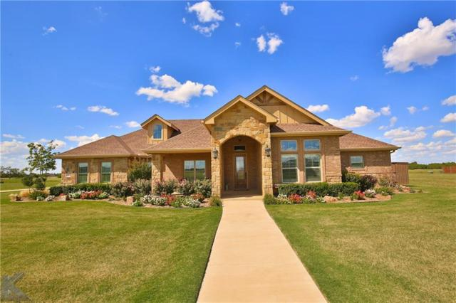 110 Tierra Court, Abilene, TX 79602 (MLS #13924203) :: RE/MAX Town & Country