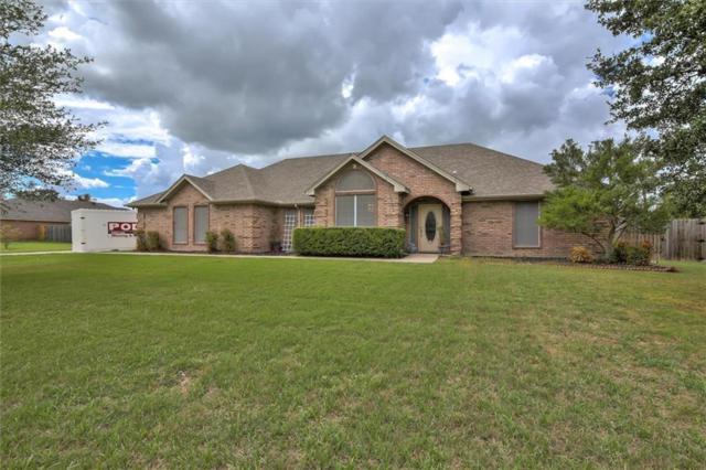 206 Southview Drive, Hudson Oaks, TX 76087 (MLS #13925247) :: RE/MAX Town & Country