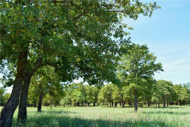 0 Treeline Court, Lipan, TX 76462 (MLS #13925643) :: Frankie Arthur Real Estate