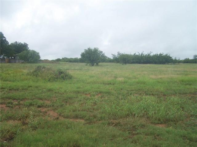 302 Salt Creek Drive, Early, TX 76802 (MLS #13926096) :: RE/MAX Town & Country