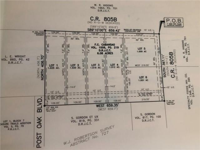 Lot 5 C.R. 805B, Keene, TX 76059 (MLS #13926126) :: The Heyl Group at Keller Williams