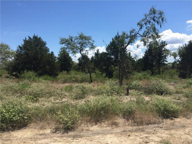 9109 W Shoreline Drive, Kemp, TX 75143 (MLS #13926208) :: The Real Estate Station