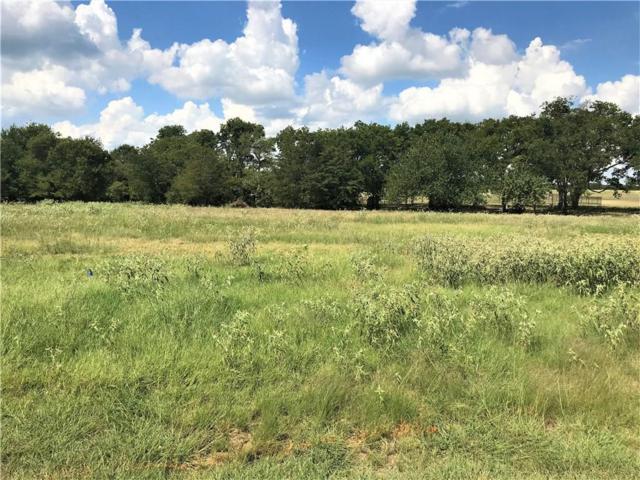1333 Eagle Lake Drive, Wills Point, TX 75169 (MLS #13928367) :: Robbins Real Estate Group