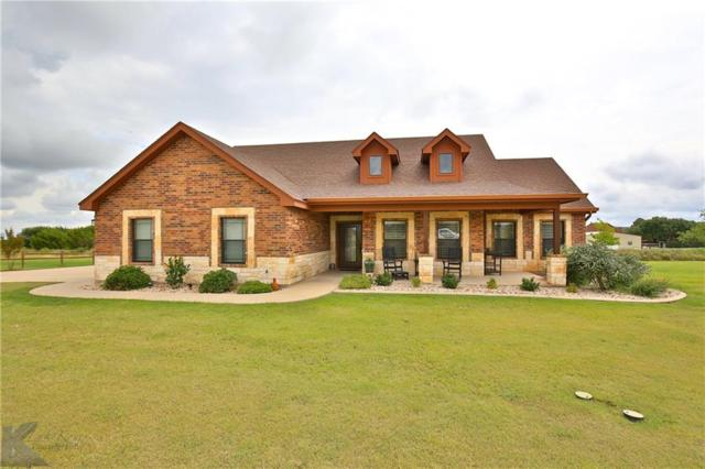 157 Lunar View Drive, Tuscola, TX 79562 (MLS #13931031) :: The Tonya Harbin Team