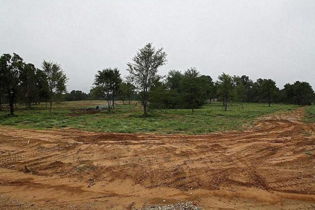 TBD Cr 2184, Gainesville, TX 76240 (MLS #13932372) :: The Heyl Group at Keller Williams