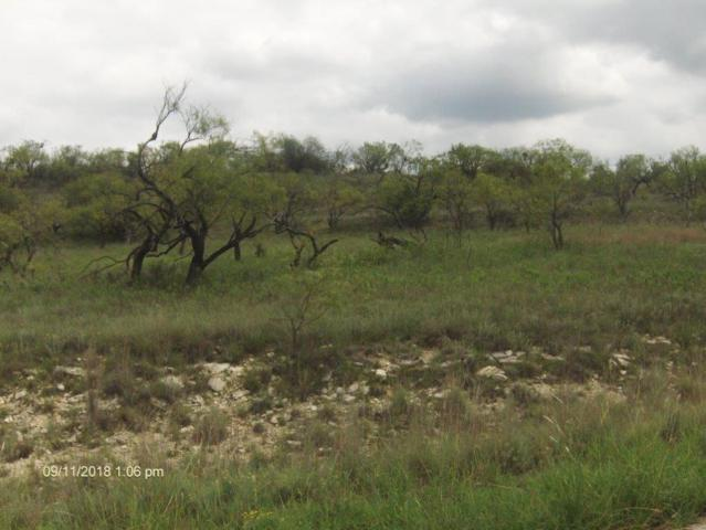 000 Lake Point Road, Comanche, TX 76442 (MLS #13933492) :: The Heyl Group at Keller Williams