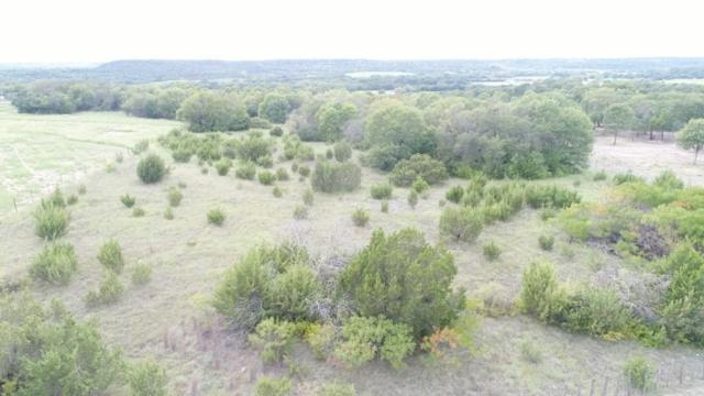 TBD Lookout Point, Stephenville, TX 76401 (MLS #13934048) :: The Heyl Group at Keller Williams