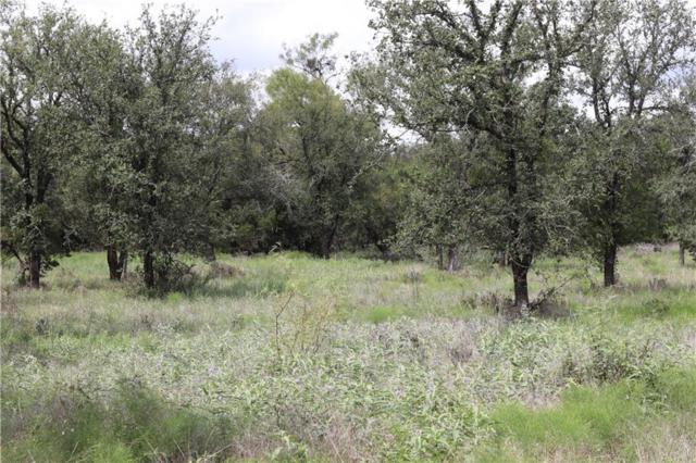 00 TBD N Wilson Road, Santo, TX 76472 (MLS #13934234) :: Frankie Arthur Real Estate