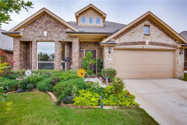 817 Mahogany Drive, Anna, TX 75409 (MLS #13934812) :: Pinnacle Realty Team