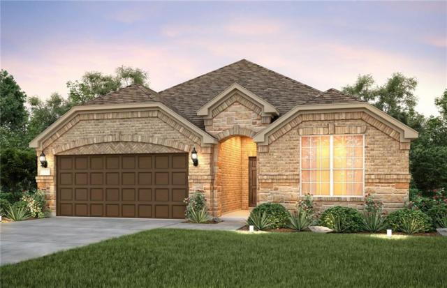 1316 Lake Falls Terrace, Lewisville, TX 75056 (MLS #13934850) :: Pinnacle Realty Team