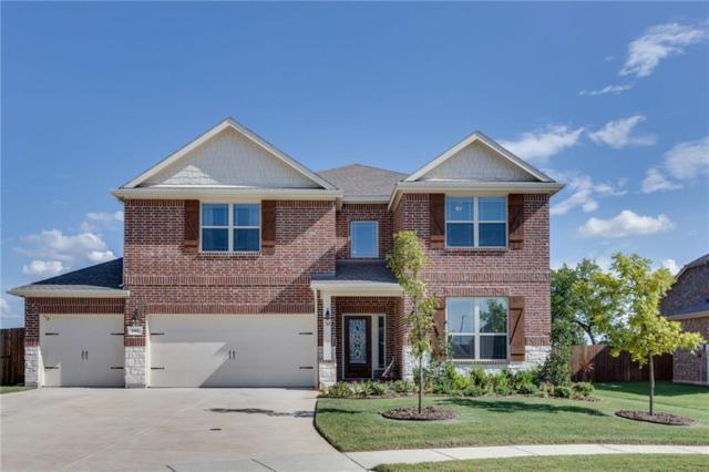 344 Chamberlain Drive, Fate, TX 75189 (MLS #13934946) :: RE/MAX Landmark