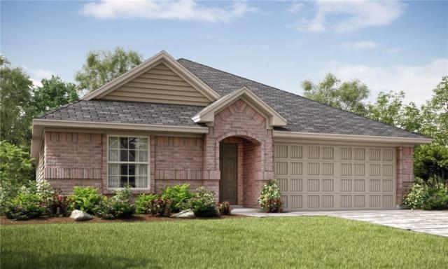 1325 Rembrandt Drive, Little Elm, TX 75068 (MLS #13936016) :: Team Tiller