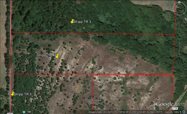 Tr 4 Cr 2382, Mineola, TX 75773 (MLS #13936048) :: Robbins Real Estate Group
