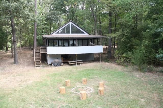 58 SE Dogwood Trail Trail SE, Mount Vernon, TX 75457 (MLS #13936203) :: The Heyl Group at Keller Williams