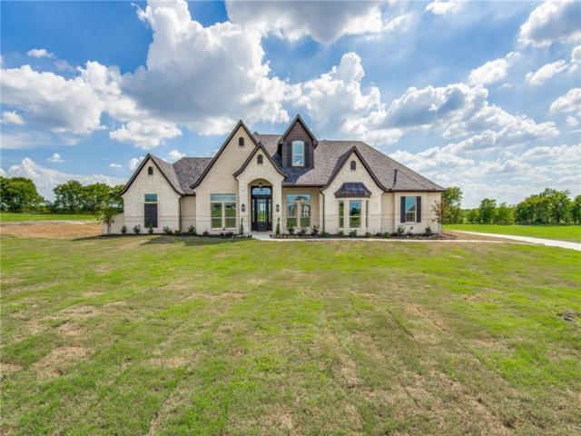 4446 Lake Breeze Drive, Mckinney, TX 75071 (MLS #13937131) :: Robbins Real Estate Group