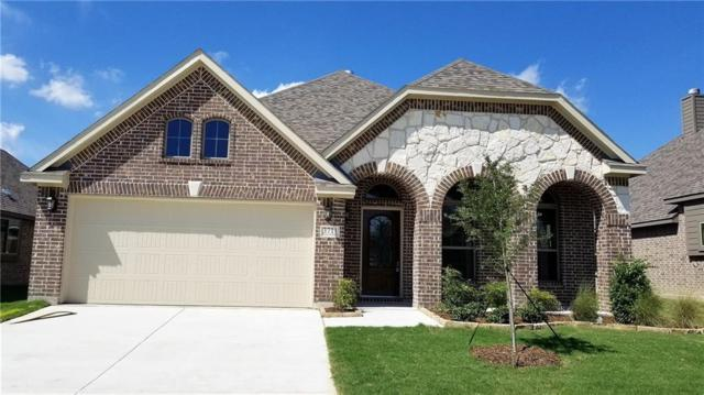 3711 White Summit Lane, Melissa, TX 75454 (MLS #13938873) :: RE/MAX Town & Country