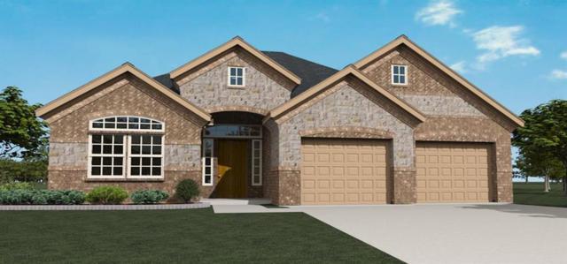 1632 Sonnet, Rockwall, TX 75032 (MLS #13938877) :: Baldree Home Team