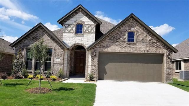 3709 White Summit Lane, Melissa, TX 75454 (MLS #13938894) :: Magnolia Realty