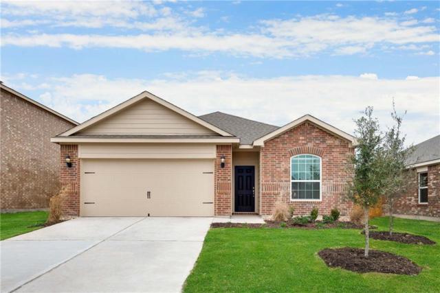 3100 Elam Street, Anna, TX 75409 (MLS #13939198) :: Robbins Real Estate Group