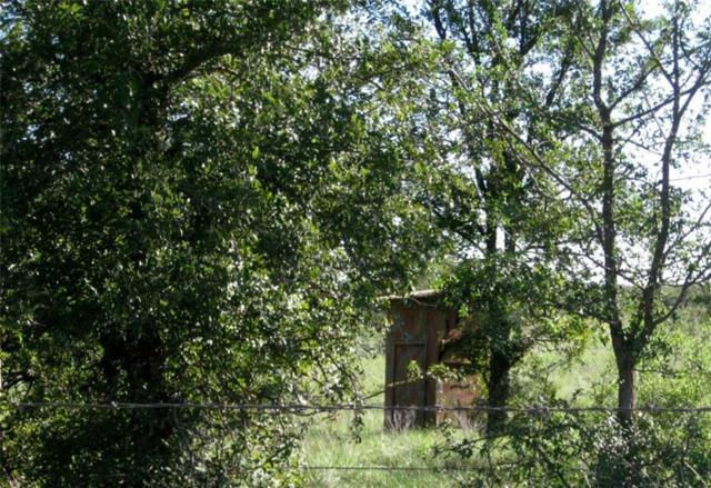 1529 County Road 134, Brownwood, TX 76801 (MLS #13939253) :: Baldree Home Team