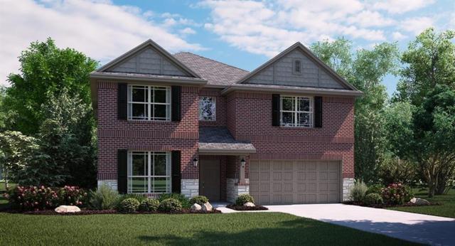 1207 Lake Falls Terrace, Lewisville, TX 75056 (MLS #13939519) :: Real Estate By Design