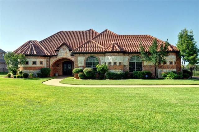 2514 Texas Plume Road, Cedar Hill, TX 75104 (MLS #13939838) :: RE/MAX Pinnacle Group REALTORS