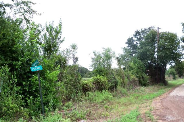 tbd Fcr 445 Road, Fairfield, TX 75840 (MLS #13939877) :: Magnolia Realty