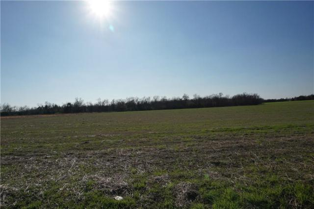 TBD County Road 3615, Honey Grove, TX 75446 (MLS #13941572) :: RE/MAX Town & Country