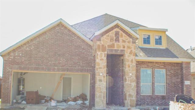 10800 Blaze Street, Aubrey, TX 76227 (MLS #13941724) :: The Real Estate Station
