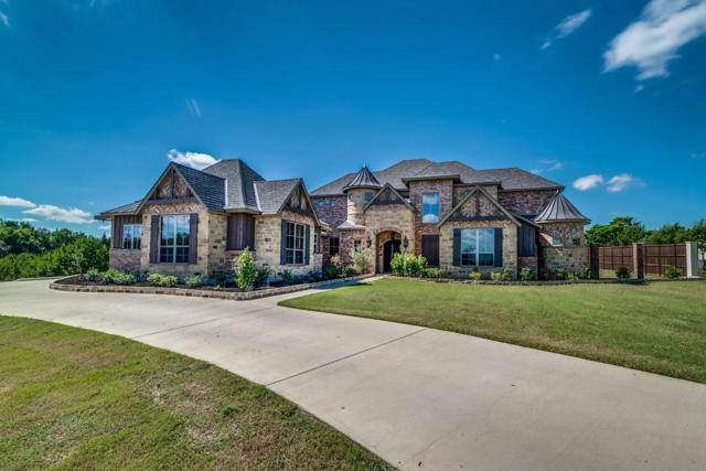 3640 Waters Edge Drive, Midlothian, TX 76065 (MLS #13942579) :: RE/MAX Landmark