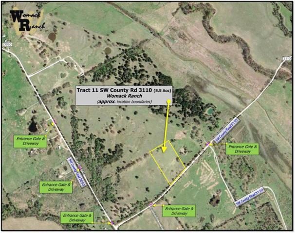 Tr 11 SW County Road 3110, Purdon, TX 76679 (MLS #13942736) :: Team Tiller