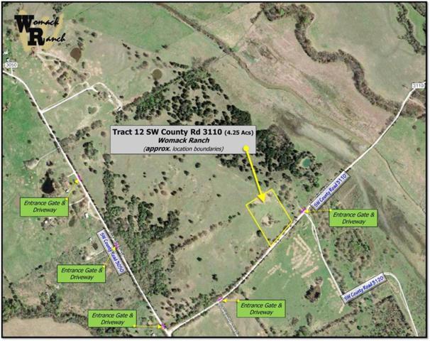 Tr 12 SW County Road 3110, Purdon, TX 76679 (MLS #13942756) :: Team Tiller