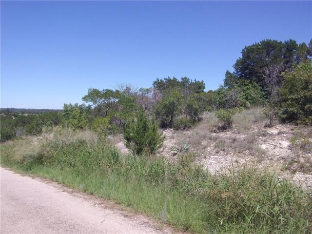 3510 Blueberry Trail, Granbury, TX 76048 (MLS #13943299) :: Steve Grant Real Estate