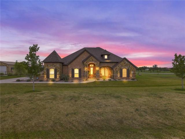 202 Wapiti Drive, Azle, TX 76020 (MLS #13944862) :: The Real Estate Station