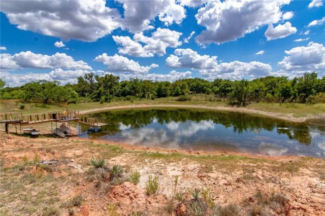 12151 County Road 306, Zephyr, TX 76890 (MLS #13945402) :: The Real Estate Station