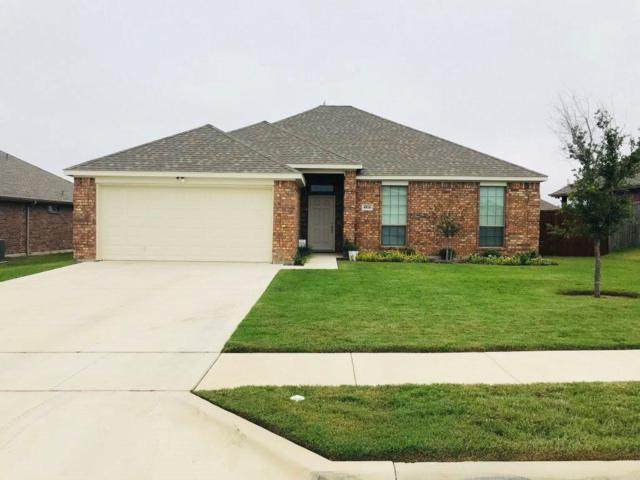 4016 Highplains Drive, Sanger, TX 76266 (MLS #13945437) :: Baldree Home Team