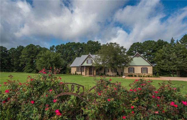 14583 Caddo Creek Circle, Larue, TX 75770 (MLS #13946119) :: The Real Estate Station