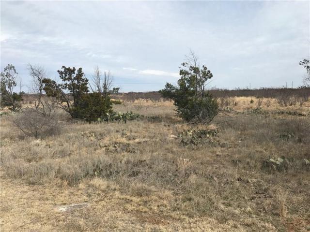 20 Oakland Hills Drive, Possum Kingdom Lake, TX 76449 (MLS #13946771) :: Frankie Arthur Real Estate