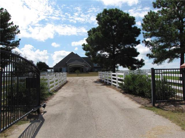 23531 Champion Drive, Lindale, TX 75771 (MLS #13946958) :: Frankie Arthur Real Estate