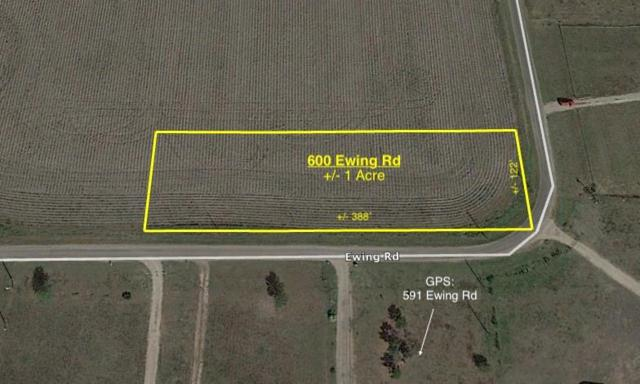600 Ewing Road, Ferris, TX 75125 (MLS #13948443) :: Robinson Clay Team