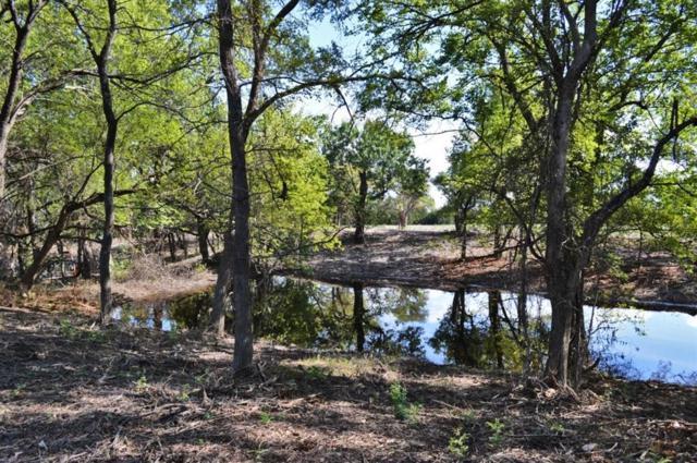 TBD Highway 121, Blue Ridge, TX 75424 (MLS #13948474) :: Magnolia Realty