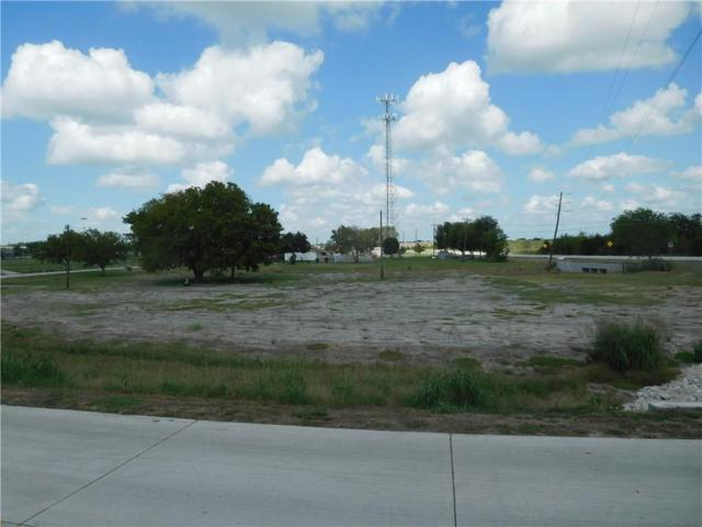 0 Lions Den Trail, Kaufman, TX 75142 (MLS #13948897) :: RE/MAX Town & Country