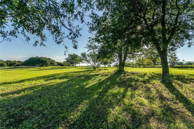 101 Feilds Court, Aledo, TX 76008 (MLS #13949553) :: Real Estate By Design